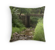 Old East Sioux Falls Throw Pillow