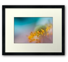 Only time will tell. Framed Print