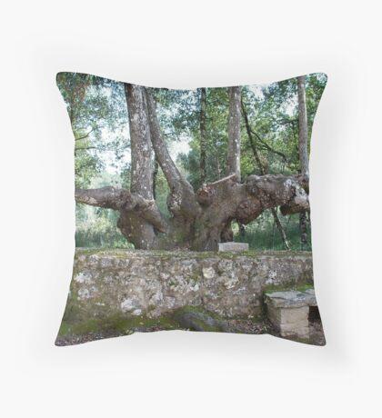 Six-legged Tuscan Tree-Italy Throw Pillow