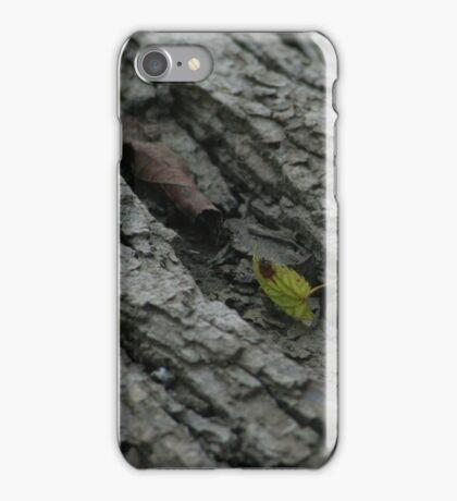 Leaf on Bark iPhone Case/Skin