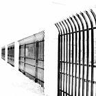 Iron Fence by David Schroeder