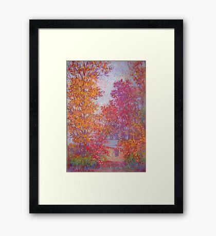 Fall trees on overcast day Framed Print