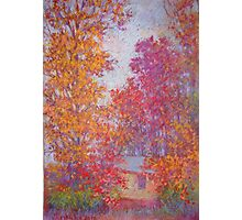 Fall trees on overcast day Photographic Print