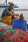 Sorting the Catch - Gallipoli Italy by Debbie Pinard
