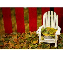 Guess It's Time To Rake The Leaves... Photographic Print