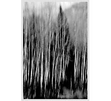 Blurred  Photographic Print