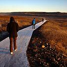 Frosty Walk by Ritva Ikonen