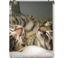 Cuddle buddies iPad Case/Skin