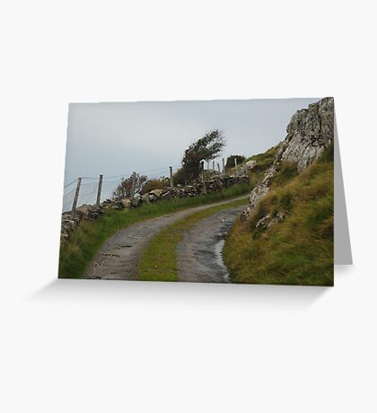 Winding road to the coast Greeting Card