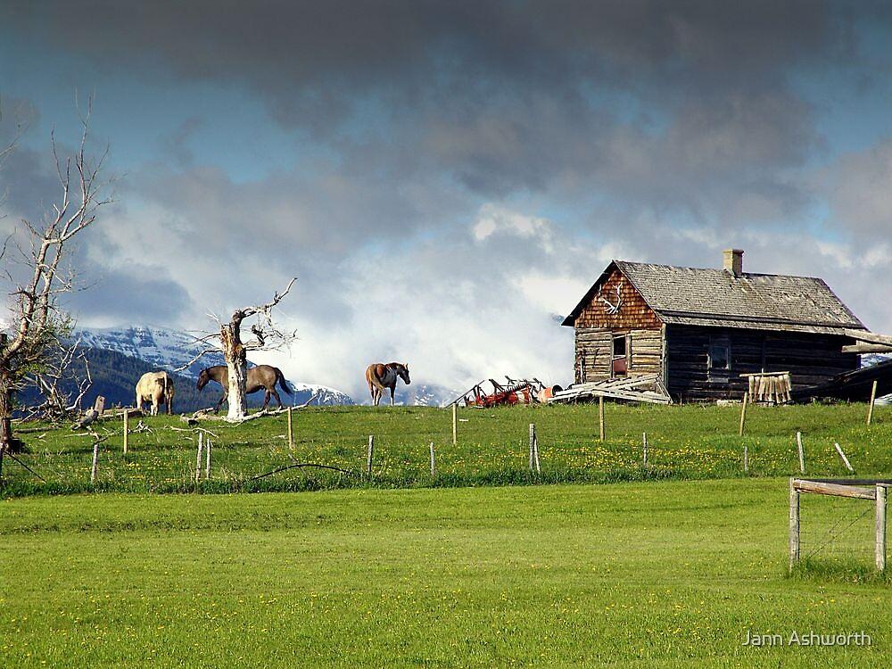 Old Homestead by Jann Ashworth