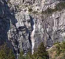 Waterfall-Akamina Parkway by Jann Ashworth