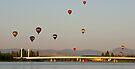 Canberra Balloon Fest 2005 #2 by Odille Esmonde-Morgan