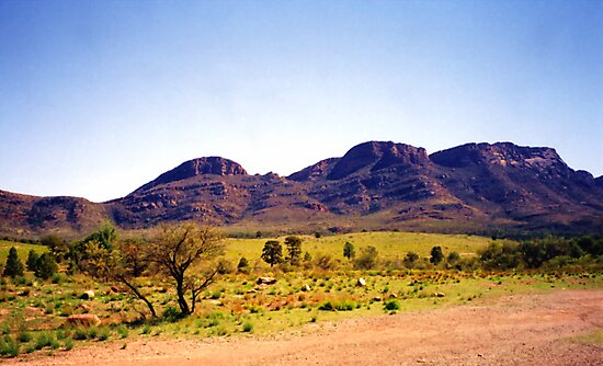 Flinders Ranges by Michael John