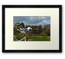 Bird's Eye View ~ Lyme Regis Framed Print