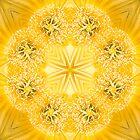 Ring a ring of sunshine by Belinda Osgood