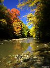 Autumn River by Marcia Rubin