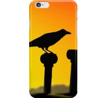 Crow silhouette iPhone Case/Skin