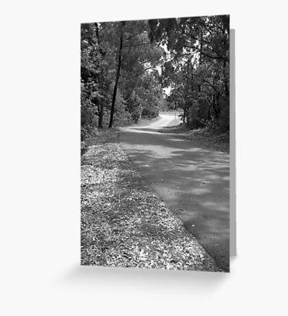 The Road from Kamaroi Greeting Card