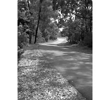 The Road from Kamaroi Photographic Print