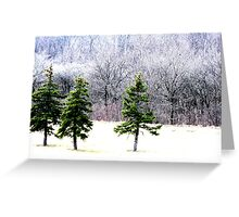 natural contrast Greeting Card