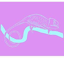 chameleon 2 Photographic Print