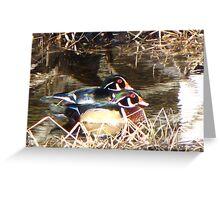 Wood Ducks in Love Greeting Card