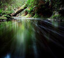 Down stream - Snug Falls by lee Henley