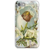 Victorian Bird Egg Hatching iPhone Case/Skin