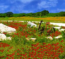 Poppies & Plow by StonePics