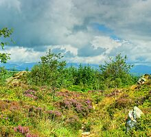 Carron Crag by Jamie  Green