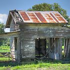 The Milking Shed, Bellinger Valley, NSW, Australia by Adrian Paul