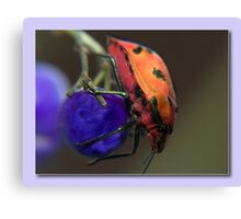 My Purple Ball Canvas Print