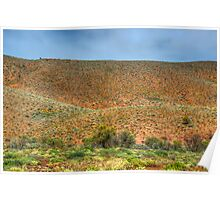 Saltbush and Red Hills Poster