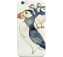 Puffins iPhone Case/Skin
