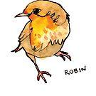 Robin by Zoe Sadokierski