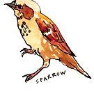 Sparrow by Zoe Sadokierski