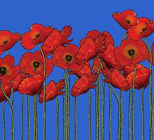 Poppies Blue by LawrenceA