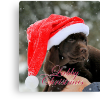 Labby christmas Canvas Print
