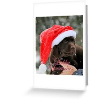 Labby christmas Greeting Card