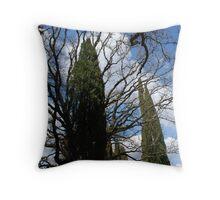 Tuscan Trees-Siena, Italy Throw Pillow