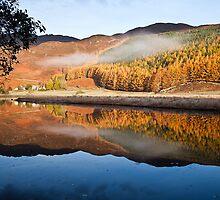Glen Affric by Martin Slowey