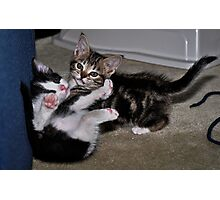 """"""" Play Time """" Photographic Print"""