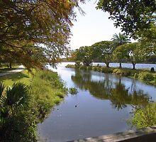 Taylor Park, Largo by Ginny Schmidt