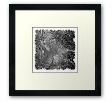 The Atlas of Dreams - Plate 2 (b&w) Framed Print