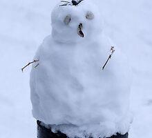 First Snowman by leunig