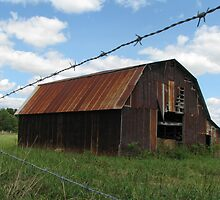 Barn at the Stone County Line by davidsimmons