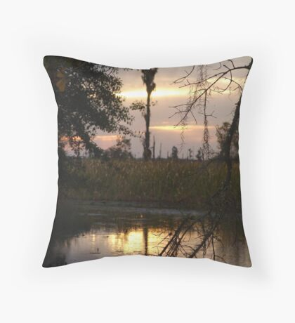 GOLD SPILL Throw Pillow