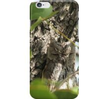 Beautiful African Barred Owlet iPhone Case/Skin