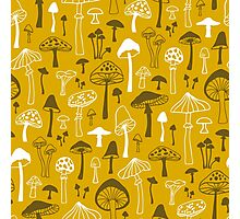 Mushrooms in Yellow Photographic Print