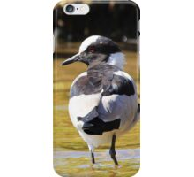 Blacksmith Lapwing iPhone Case/Skin